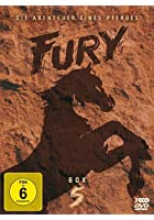 Fury - Die Abenteuer eines Pferdes - Box 5