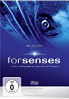 Forsenses - A Fascinating Journey into Nature &amp; Sound