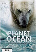 Planet Ocean - Das Meer und seine Bewohner