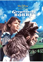 Greyfriars Bobby - Die wahre Geschichte eines Hundes