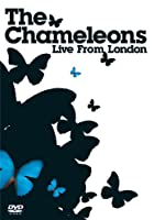 Chameleons - Live from London