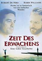 Zeit des Erwachens