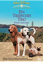 Ein tierisches Trio - wieder unterwegs