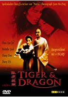 Tiger &amp; Dragon - Der Beginn einer Legende