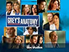 Grey's Anatomy - Staffel 8