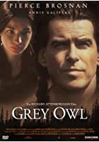 Grey Owl