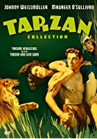 Tarzans Vergeltung / Tarzan und sein Sohn