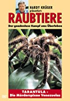 Raubtiere - Tarantula - Die M&ouml;rderspinne Venezuelas