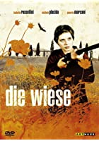 Die Wiese