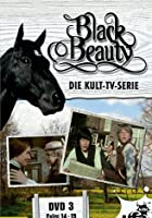 Black Beauty - TV-Serie - DVD 3