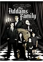 Addams Family - Volume 1