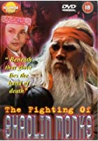 The Fighting Of Shaolin Monks