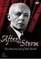 Bela Bartok - After The Storm