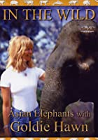 In The Wild - Asian Elephants With Goldie Hawn