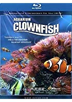 Plasma Art - Clownfish