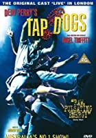 Dein Perry&#39;s Tap Dogs