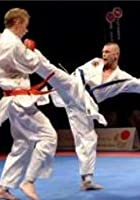 The Very Best Of Karate Clashes