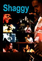 Shaggy - Live at Chiemsee Reggae Summer 1998, Remix