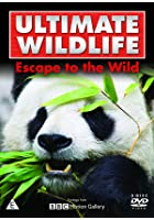 Ultimate Wildlife - Escape To The Wild