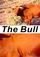 The Bull