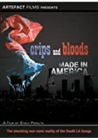 Crips And Bloods - Made In America