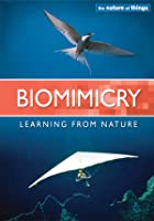 The Nature of Things - Biomimicry, Part 2