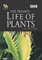 The Private Life Of Plants