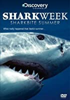 Sharkweek - Sharkbite Summer