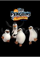 Penguins Of Madagascar - Operation Penguin Patrol