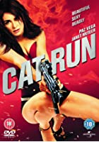 Cat Run