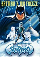 Batman and Mr Freeze - SubZero