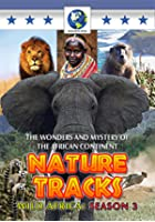 Nature Tracks - Series 3 - Wild Africa