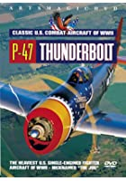 Classic US Combat Aircraft Of WW2 - P-47 Thunderbolt