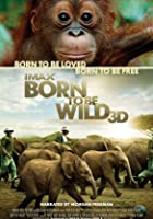 IMAX - Born To Be Wild - 3D Blu-ray