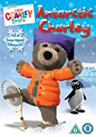 Little Charley Bear - Antarctic Charley