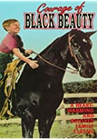 Courage of Black Beauty