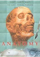 Anatomy