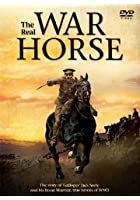 The Real War Horse