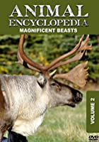 Animal Encyclopedia Vol 2 - Magnificent Beasts