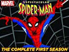 Spectacular Spider Man - Series 1