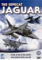 The Sepecat Jaguar