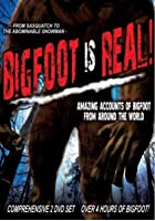 Bigfoot Is Real - Sasquatch To The Abominable Snowman