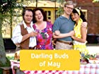 Darling Buds of May - Series 1