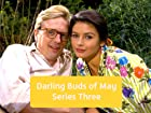 Darling Buds of May - Series 3