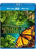 The Incredible Journey Of The Monarch Butterfly