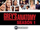 Grey's Anatomy - Series 1