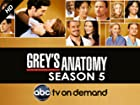 Grey's Anatomy - Series 5