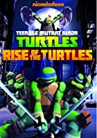 Teenage Mutant Ninja Turtles - Rise of the Turtles - Series 1 - Vol.1