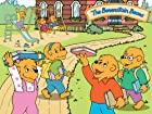 Berenstain Bears - Series 2