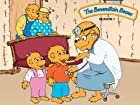 Berenstain Bears - Series 1